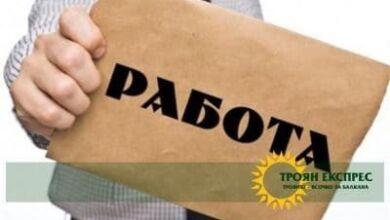 Photo of Фирма  търси персонал за дървообработващо предприятие